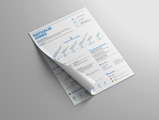Resume Template Innovate View 1