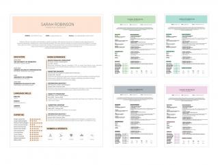 Resume Template Edge View 1