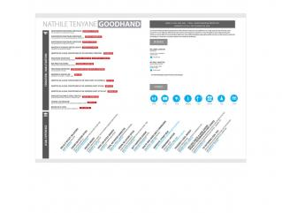 Resume Template Paragon View 1